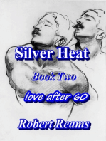 Silver Heat II