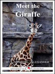 Meet the Giraffe: A 15-Minute Book for Early Readers