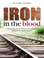 Iron in the Blood