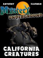Mystery Underground