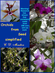 Orchids From Seed Simplified