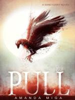 Pull (Sanctuary #1)