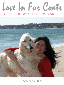 Love in Fur Coats: Gifts from my Animal Companions