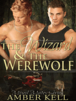 The Wizard and The Werewolf