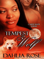 Tempest the Wolf