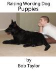 raising-working-dog-puppi