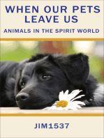 When Our Pets Leave Us Animals in the Spirit World