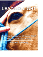 Leading Light; an Introduction to Ground Work for You and Your Horse