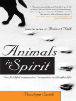 Animals in Spirit