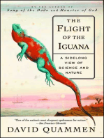 The Flight of the Iguana