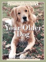Your Older Dog