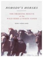 Nobody's Horses