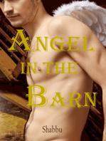 Angel in the Barn