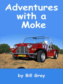 Adventures with a Moke