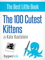 The 100 Cutest Kittens