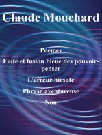 Poèmes, Fuite et fusion bleue des pouvoir-penser, L'erreur hirsute, Phrase aventureuse, Non (une ébauche)