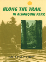 Along the Trail in Algonquin Park