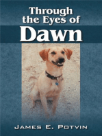 Through the Eyes of Dawn