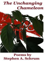 Unchanging Chameleon