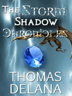 The Storm Shadow Chronicles