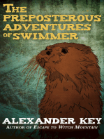 The Preposterous Adventures of Swimmer