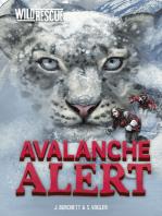 Avalanche Alert