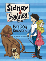 Big Dog Decisions (Sidney and Sydney)
