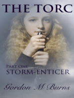 The Torc Part One Storm-enticer