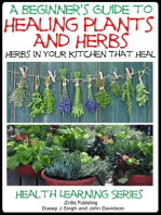 A Beginner's Guide to Healing Plants and Herbs