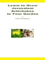 Learn to Grow Jerusalem Artichokes in Your Garden