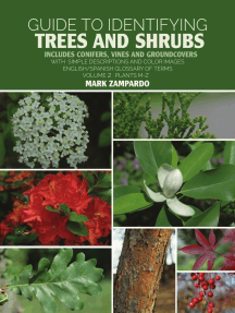 Guide to Identifying Trees and Shrubs Plants M-Z: Includes Conifers, Vines and Groundcovers