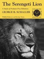 The Serengeti Lion