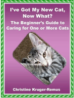 I've Got My New Cat, Now What? The Beginner's Guide to Caring for One or More Cats
