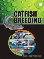 Catfish Breeding