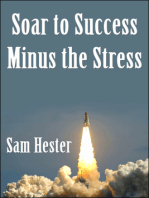 Soar to Success Minus the Stress