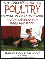 A Beginner's Guide to Poultry Farming in Your Backyard
