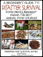 A Beginner's Guide to Disaster Survival