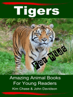 Tigers For Kids