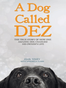 A Dog Called Dez: The True Story of How One Amazing Dog Changed His Owner's Life