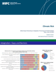 International Finance Corporation Climate Risk