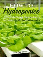 How To Hydroponics