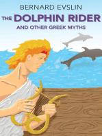 The Dolphin Rider