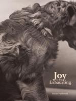 Joy Is So Exhausting
