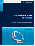 The Basics of IT Audit