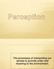 PPT on Perception