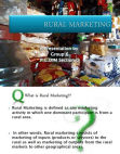 SWOT Analysis of The Rural Market