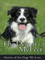 The Dog at My Feet