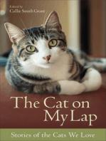 The Cat on My Lap