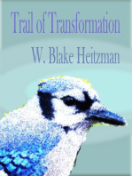 Trail of Transformation