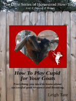 How To Make a Buck Rag & Other Good Things To Know About Breeding Your Goats